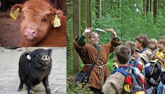 Toller Kinder-Geburtstag im Wildpark Schwarze Berge